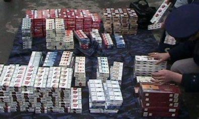 contrabanda tigari