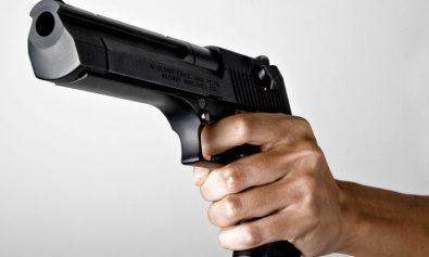 arme si munitii
