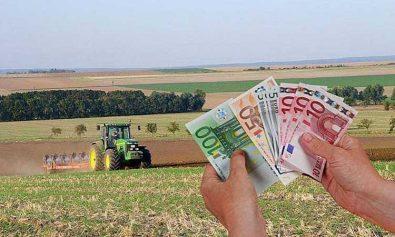 bani fermieri