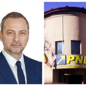 PNL colaj
