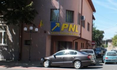 PNL-sedinta-comitet-executiv