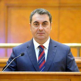 Marian Mina-parlament